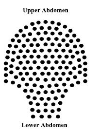 layout di 151 array di sensori posizionati sull'addome materno.