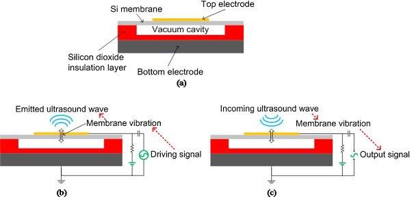 a)Capacitive Micromachined Ultrasound Transducer (CMUT); b) Funzionamento in trasmissione; c) Funzionamento in ricezione.