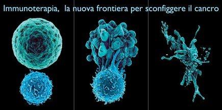 immunoterapia cellule necrosi