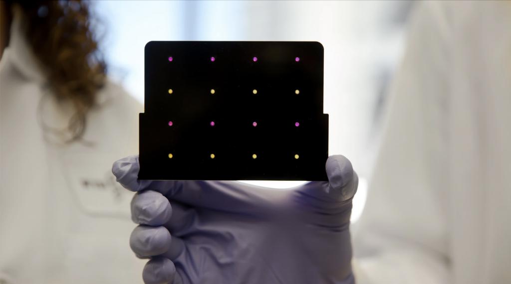 zika diagnostica wFDCF biosensori