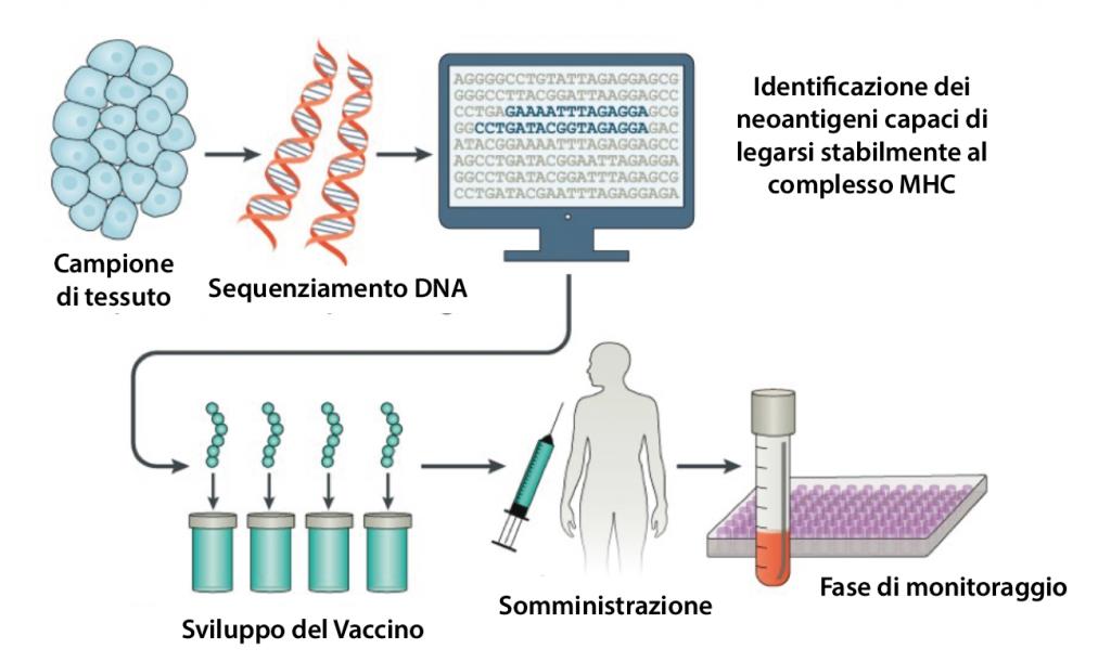 vaccino anti-cancro personalizzato sequenziamento neoantigeni